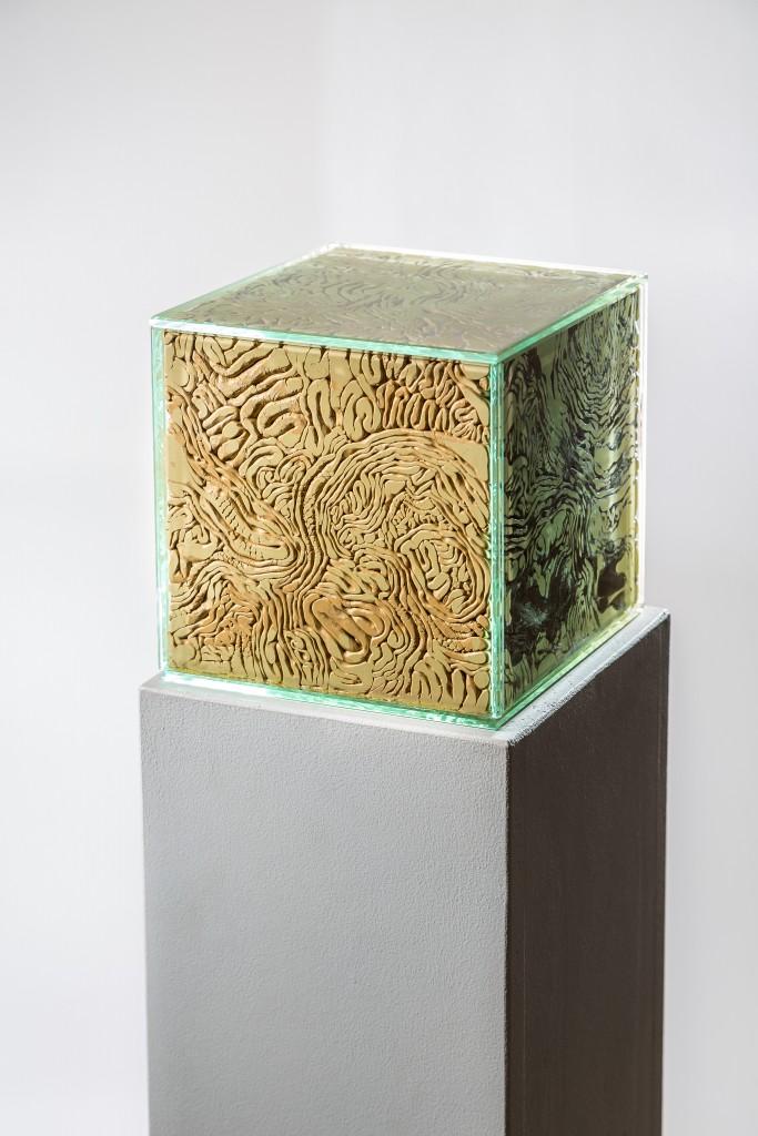 Agresor, plastelina barwiona, szkło, 20 x 20 x 20 cm, 2016